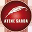 LISTA CIVICA - ATENE SARDA